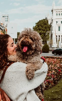 6 Dog-Friendly Cities to Visit with Your Dog This Summer